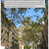 Barcelona Weekendgids – Leuke weetjes